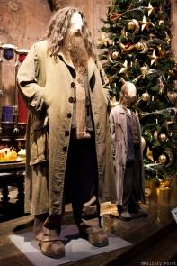 Hagrid !