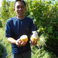 L'agriculteur et un fruit de cacao.