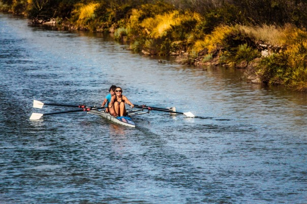 rowing-898008_960_720